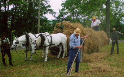 Festa contadina a Brazzacco (UD)