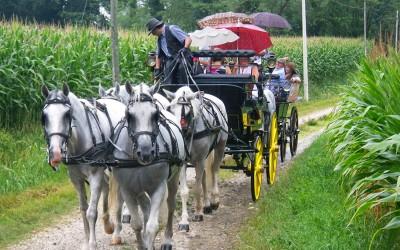 Escursione vicino a San Daniele Del Friuli (UD)