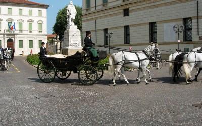 Esibizione al Centro Storico di Vicenza